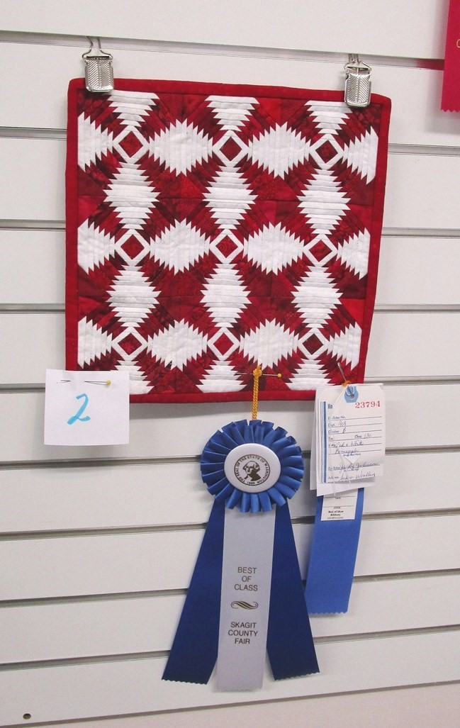 Judy J - Skagit Fair Rosette & Blue Ribbon