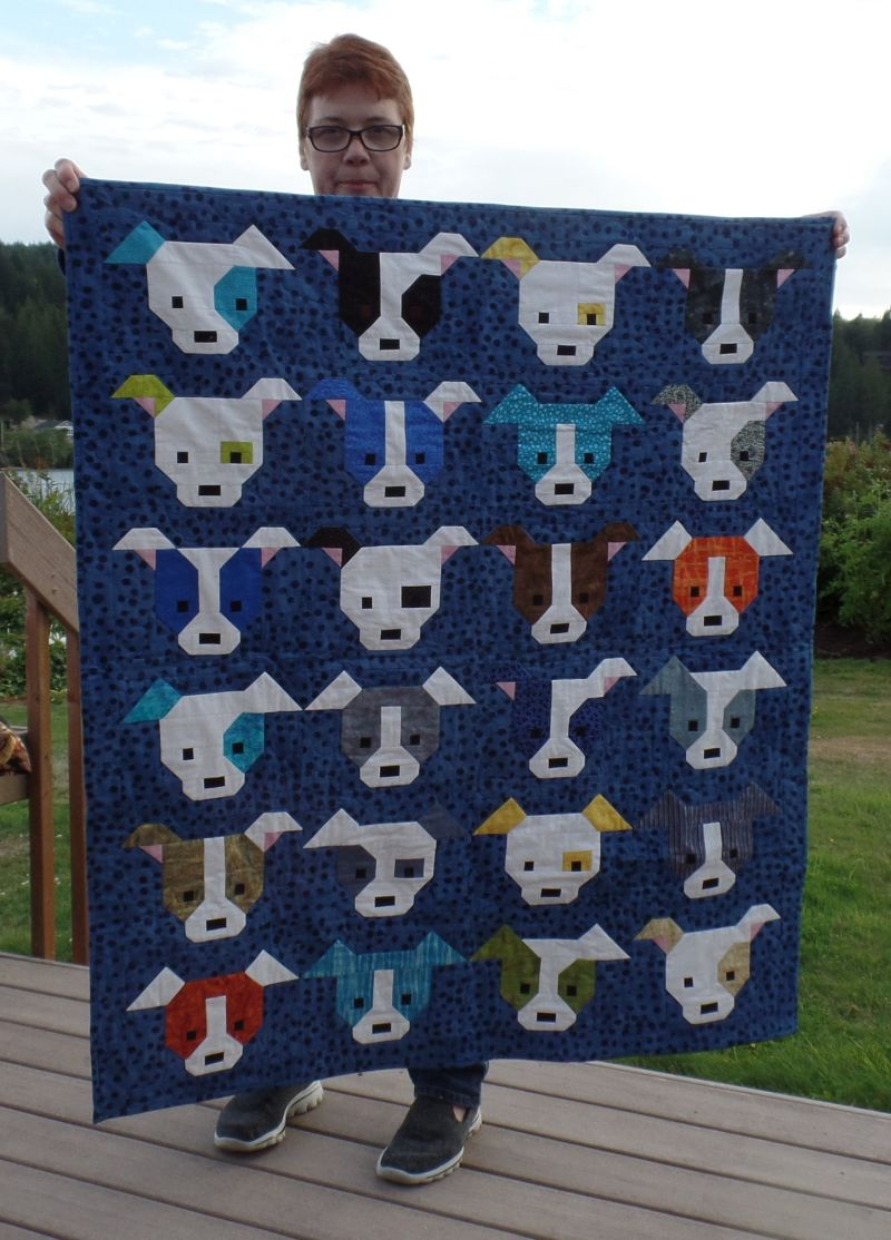 Michele B - Quilt for a baby boy