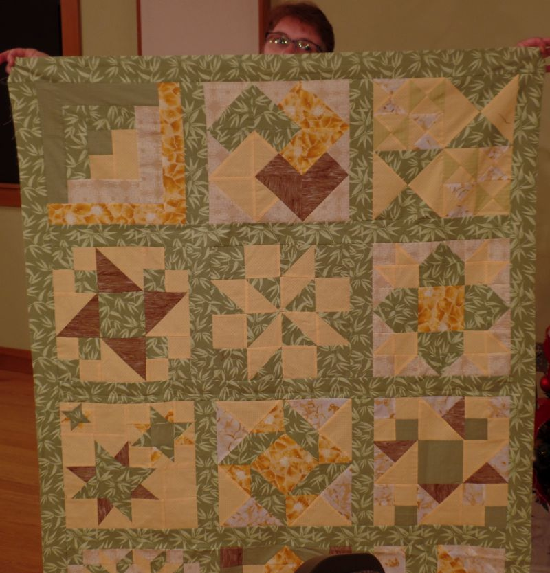 Pizza Box Quilt - Michele B.