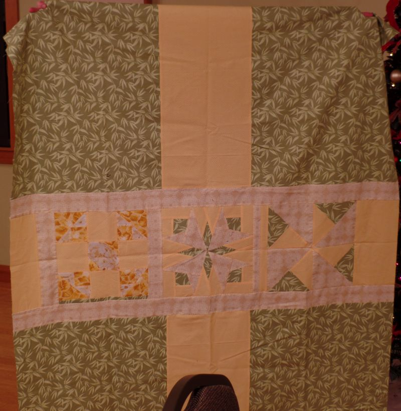 Pizza Box Quilt Back - Michele B.